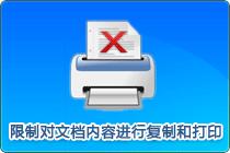限制外发文档复制打印